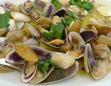 Black sea white clams Tellina with garlic and cream